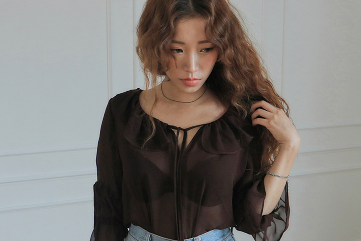frill collar drop sheer blouse